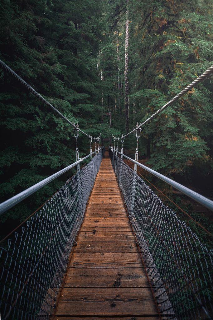 hanging bridge cables